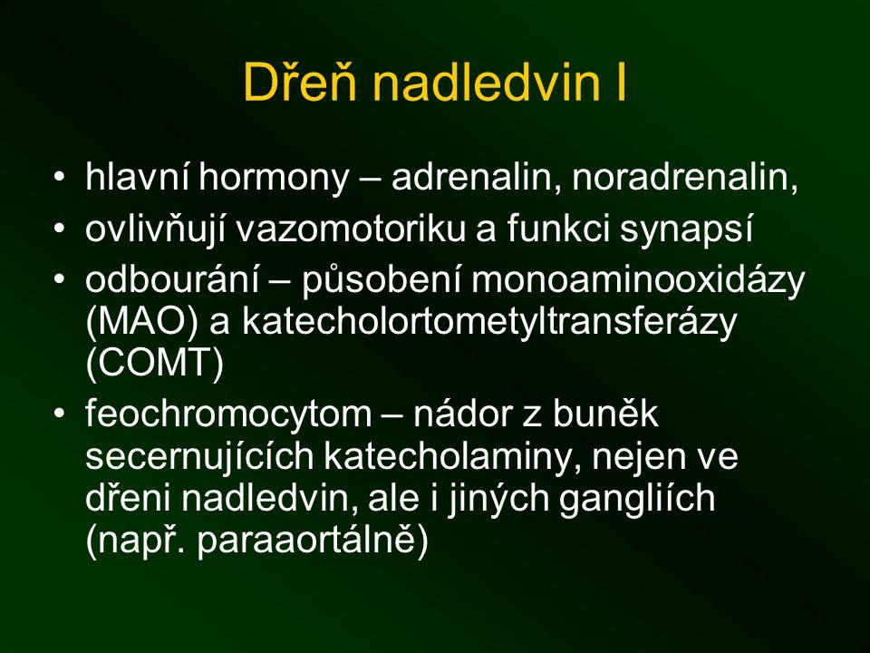 Dřeň nadledvin I hlavní hormony – adrenalin, noradrenalin, ovlivňují vazomotoriku a funkci synapsí odbourání – působení monoaminooxidázy (MAO) a katecholortometyltransferázy (COMT) feochromocytom – nádor z buněk secernujících katecholaminy, nejen ve dřeni nadledvin, ale i jiných gangliích (např.