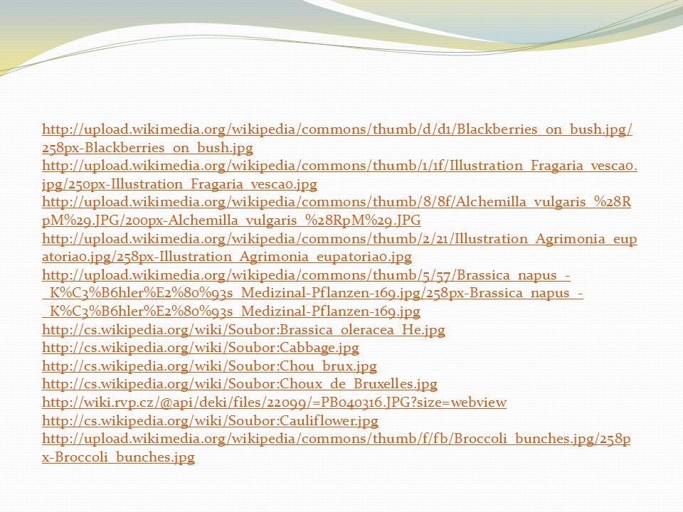 http://upload.wikimedia.org/wikipedia/commons/thumb/d/d1/Blackberries_on_bush.jpg/ 258px-Blackberries_on_bush.jpg http://upload.wikimedia.org/wikipedia/commons/thumb/1/1f/Illustration_Fragaria_vesca0.