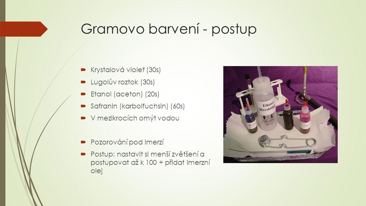 Gramovo barvení - postup  Krystalová violeť (30s)  Lugolův roztok (30s)  Etanol (aceton) (20s)  Safranin (karbolfuchsin) (60s)  V mezikrocích omý