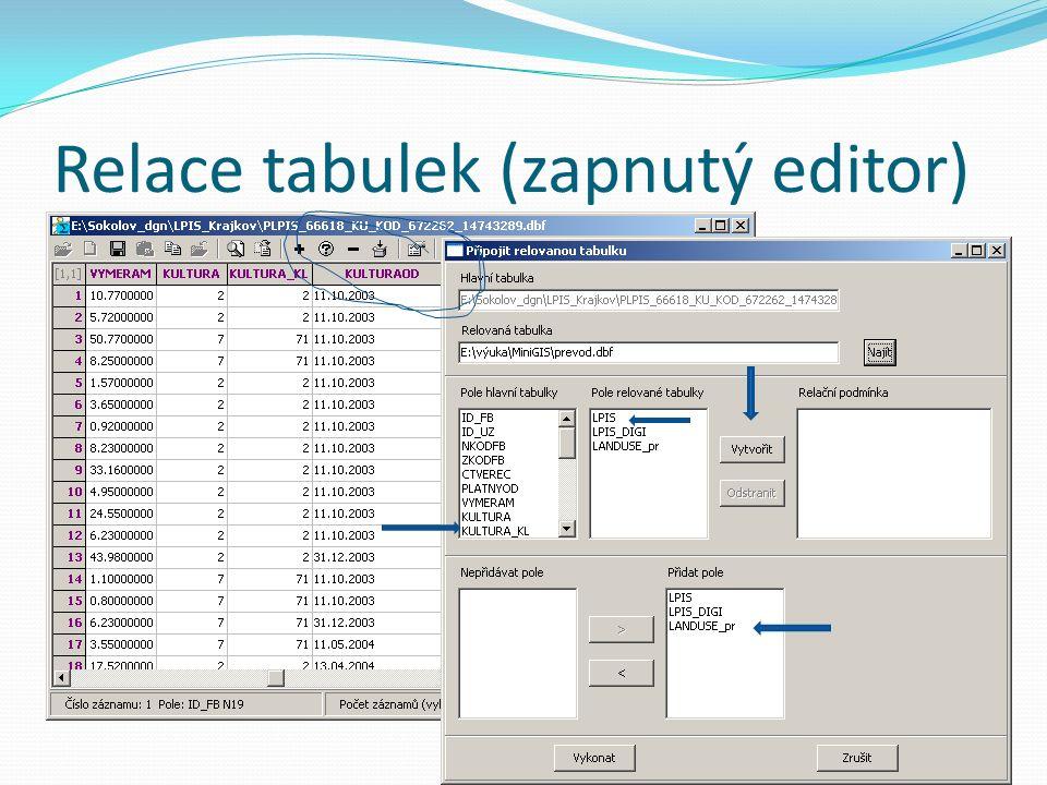 Relace tabulek (zapnutý editor)