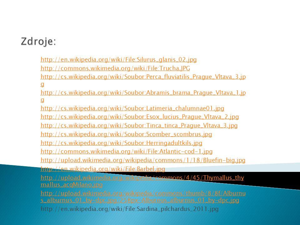 http://en.wikipedia.org/wiki/File:Silurus_glanis_02.jpg http://commons.wikimedia.org/wiki/File:Trucha.JPG http://cs.wikipedia.org/wiki/Soubor:Perca_fl