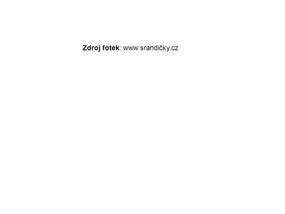 Zdroj fotek: www.srandičky.cz