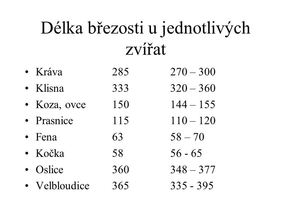 Délka březosti u jednotlivých zvířat Kráva 285270 – 300 Klisna333320 – 360 Koza, ovce150144 – 155 Prasnice115110 – 120 Fena6358 – 70 Kočka5856 - 65 Oslice360348 – 377 Velbloudice365335 - 395