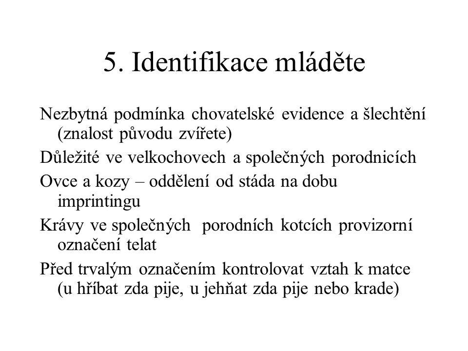 5. Identifikace mláděte Nezbytná podmínka chovatelské evidence a šlechtění (znalost původu zvířete) Důležité ve velkochovech a společných porodnicích