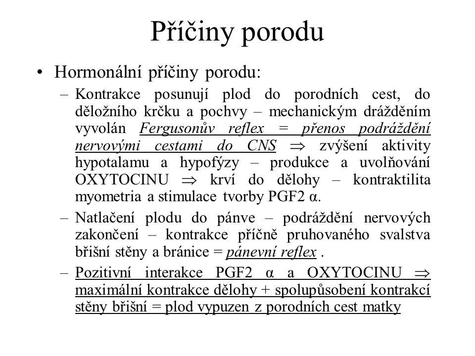 Příčiny porodu Hormonální příčiny porodu: –Kontrakce posunují plod do porodních cest, do děložního krčku a pochvy – mechanickým drážděním vyvolán Fergusonův reflex = přenos podráždění nervovými cestami do CNS  zvýšení aktivity hypotalamu a hypofýzy – produkce a uvolňování OXYTOCINU  krví do dělohy – kontraktilita myometria a stimulace tvorby PGF2 α.