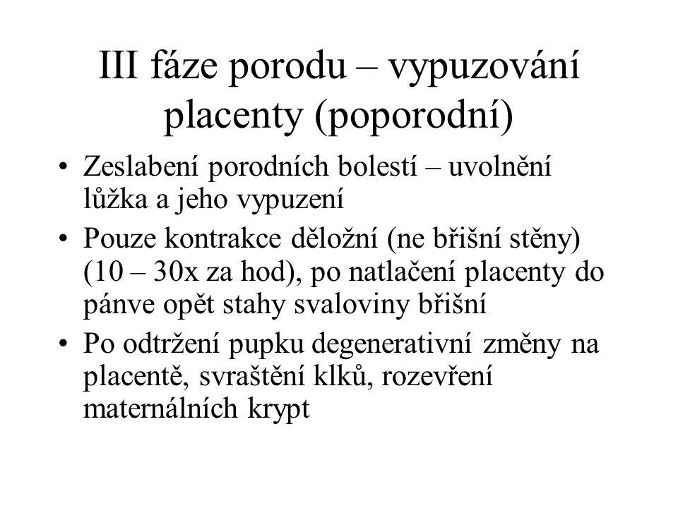 III fáze porodu – vypuzování placenty (poporodní) Zeslabení porodních bolestí – uvolnění lůžka a jeho vypuzení Pouze kontrakce děložní (ne břišní stěn