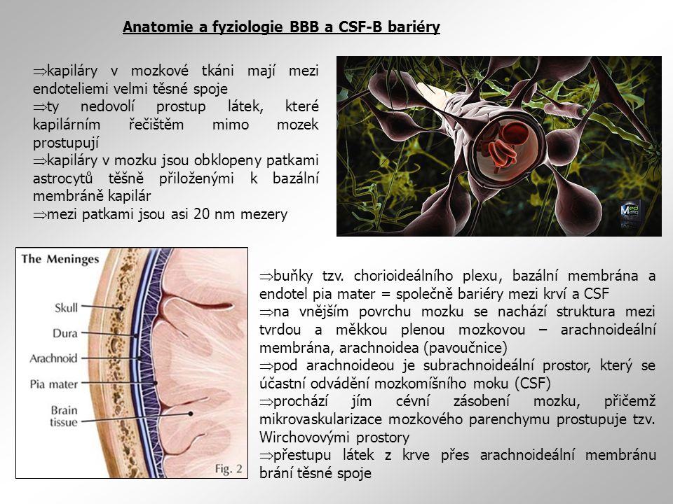  kapiláry v mozkové tkáni mají mezi endoteliemi velmi těsné spoje  ty nedovolí prostup látek, které kapilárním řečištěm mimo mozek prostupují  kapiláry v mozku jsou obklopeny patkami astrocytů těšně přiloženými k bazální membráně kapilár  mezi patkami jsou asi 20 nm mezery Anatomie a fyziologie BBB a CSF-B bariéry  buňky tzv.