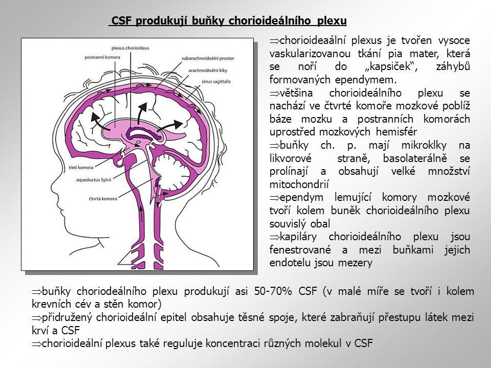 """ buňky choriodeálního plexu produkují asi 50-70% CSF (v malé míře se tvoří i kolem krevních cév a stěn komor)  přidružený chorioideální epitel obsahuje těsné spoje, které zabraňují přestupu látek mezi krví a CSF  chorioideální plexus také reguluje koncentraci různých molekul v CSF  chorioideaální plexus je tvořen vysoce vaskularizovanou tkání pia mater, která se noří do """"kapsiček , záhybů formovaných ependymem."""