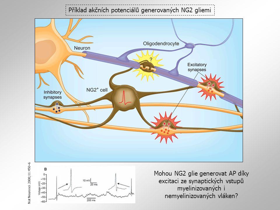 Příklad akčních potenciálů generovaných NG2 gliemi Nat Neurosci.