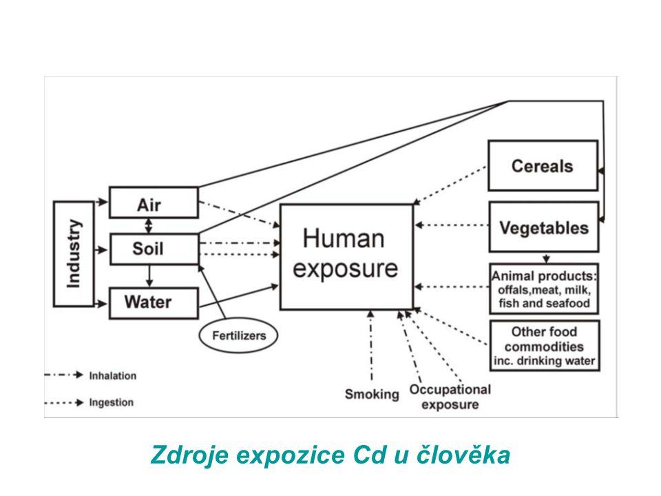 Zdroje expozice Cd u člověka