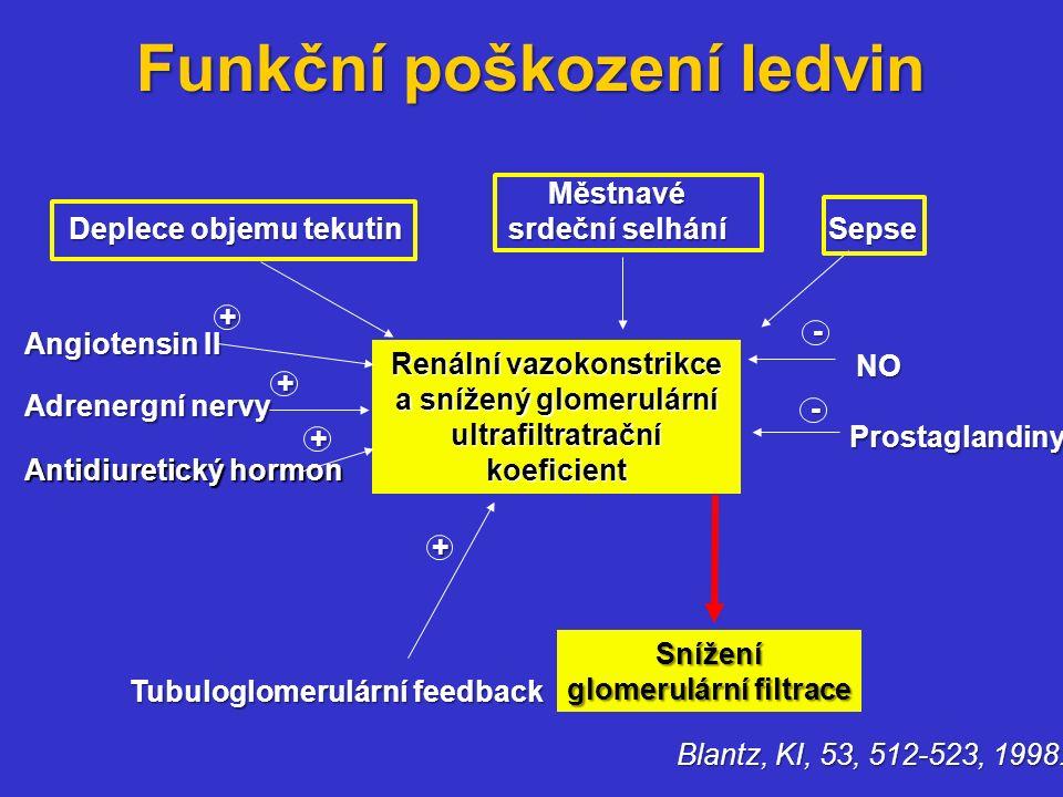 Funkční poškození ledvin Blantz, KI, 53, 512-523, 1998. Renální vazokonstrikce a snížený glomerulární ultrafiltratrační koeficient Deplece objemu teku