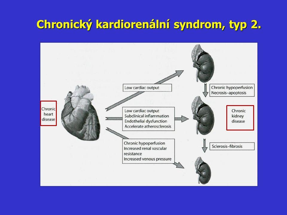 Chronický kardiorenální syndrom, typ 2.