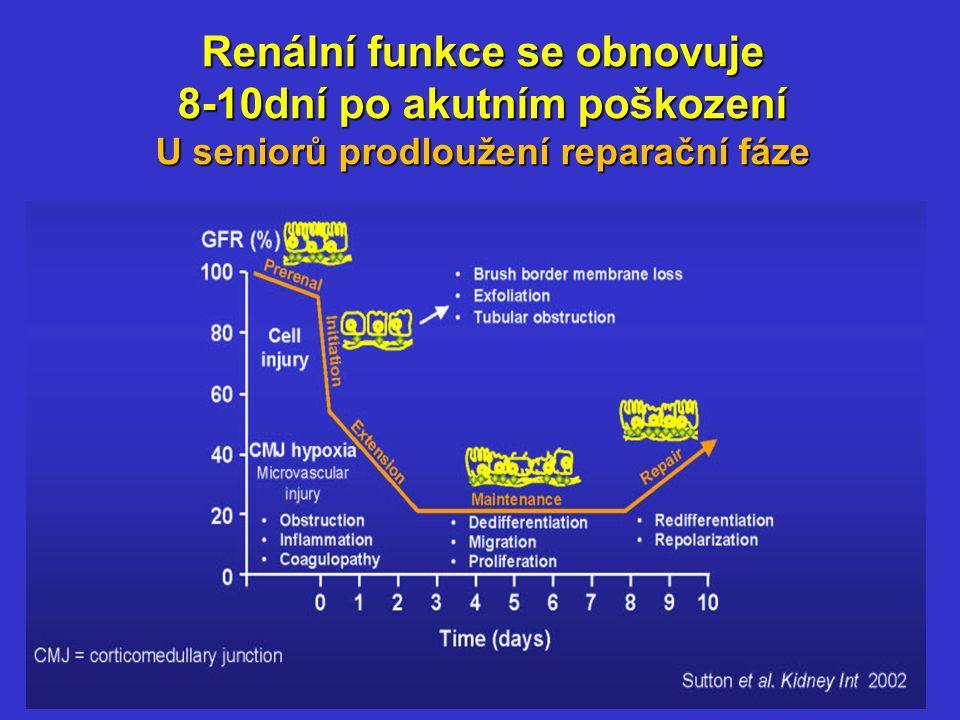 Renální funkce se obnovuje 8-10dní po akutním poškození U seniorů prodloužení reparační fáze