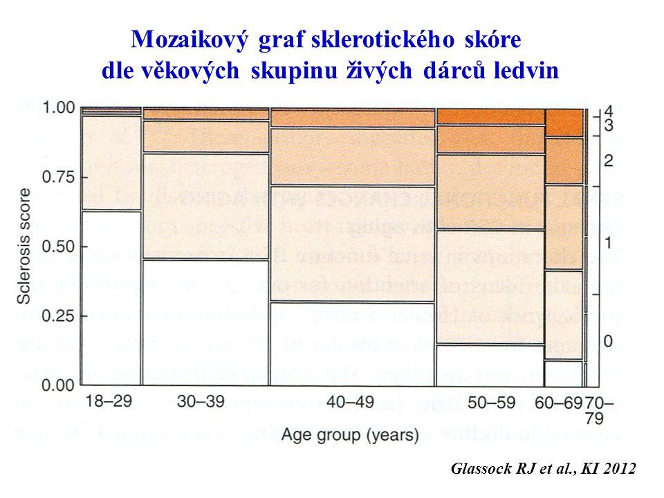 Mozaikový graf sklerotického skóre dle věkových skupinu živých dárců ledvin Glassock RJ et al., KI 2012