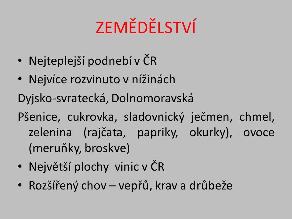 ZEMĚDĚLSTVÍ Nejteplejší podnebí v ČR Nejvíce rozvinuto v nížinách Dyjsko-svratecká, Dolnomoravská Pšenice, cukrovka, sladovnický ječmen, chmel, zelenina (rajčata, papriky, okurky), ovoce (meruňky, broskve) Největší plochy vinic v ČR Rozšířený chov – vepřů, krav a drůbeže