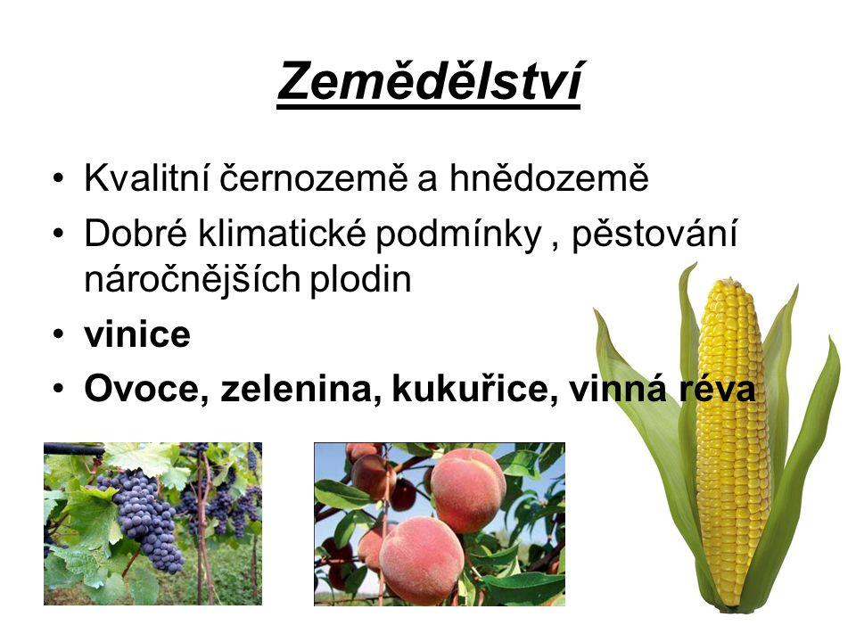 Zemědělství Kvalitní černozemě a hnědozemě Dobré klimatické podmínky, pěstování náročnějších plodin vinice Ovoce, zelenina, kukuřice, vinná réva