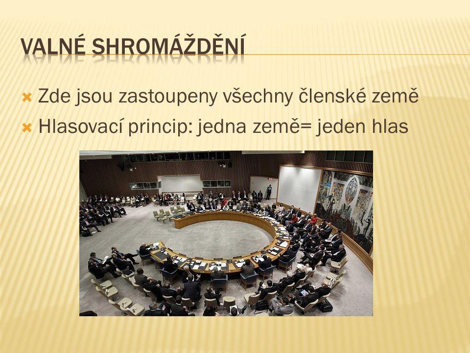  Zde jsou zastoupeny všechny členské země  Hlasovací princip: jedna země= jeden hlas