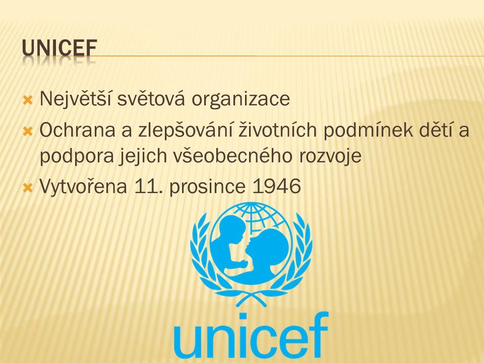  Největší světová organizace  Ochrana a zlepšování životních podmínek dětí a podpora jejich všeobecného rozvoje  Vytvořena 11. prosince 1946