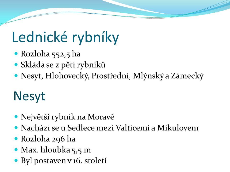 Lednické rybníky Rozloha 552,5 ha Skládá se z pěti rybníků Nesyt, Hlohovecký, Prostřední, Mlýnský a Zámecký Největší rybník na Moravě Nachází se u Sed