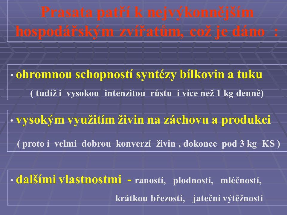 Prasata v ČR spotřebují ročně přibližně 2,5 mil. tun ( tj.