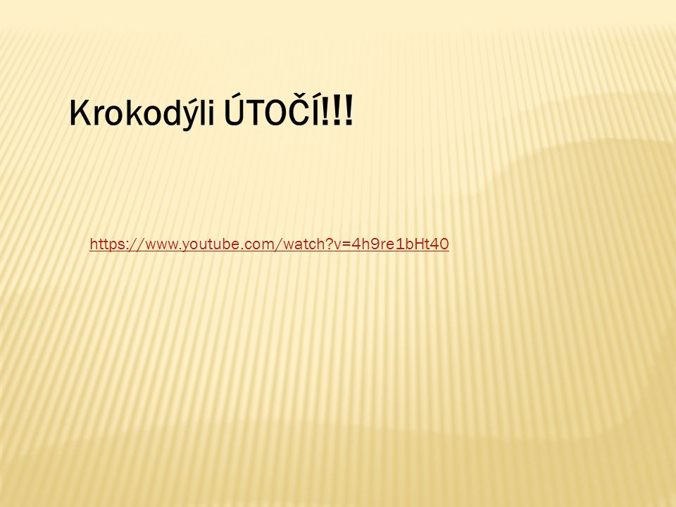 Krokodýli ÚTOČÍ ! !! https://www.youtube.com/watch v=4h9re1bHt40