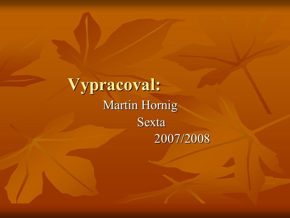 Vypracoval: Martin Hornig Sexta 2007/2008