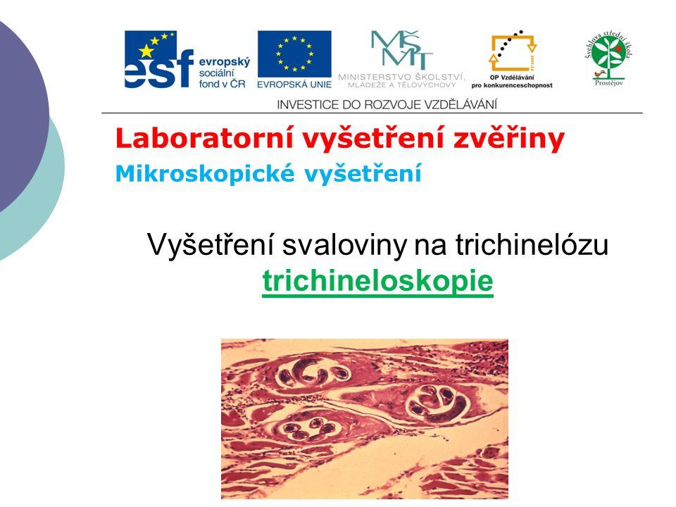 Laboratorní vyšetření zvěřiny Mikroskopické vyšetření Vyšetření svaloviny na trichinelózu trichineloskopie