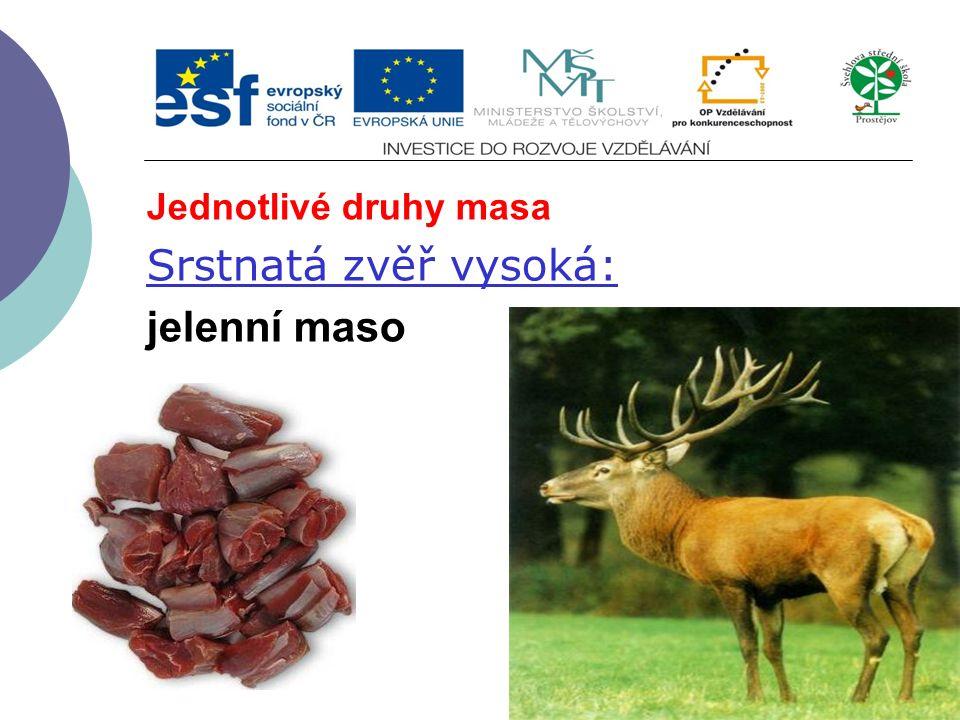 Jednotlivé druhy masa Srstnatá zvěř vysoká: jelenní maso