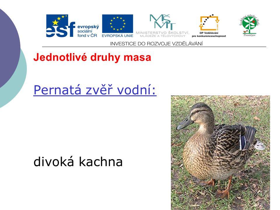 Jednotlivé druhy masa Pernatá zvěř vodní: divoká kachna