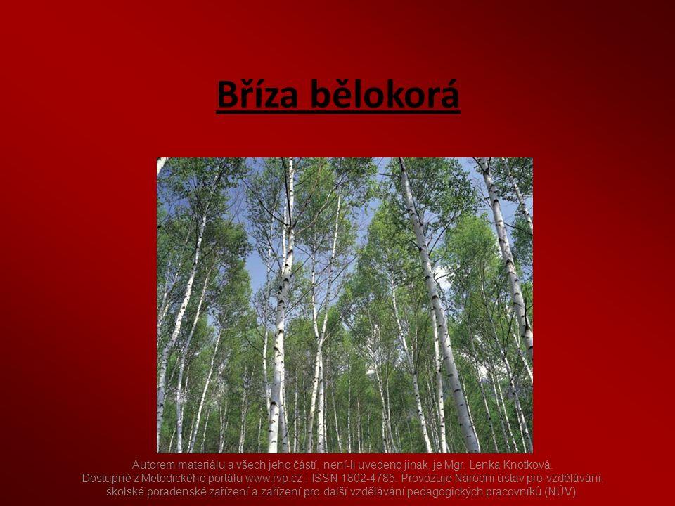 Autorem materiálu a všech jeho částí, není-li uvedeno jinak, je Mgr. Lenka Knotková. Dostupné z Metodického portálu www.rvp.cz ; ISSN 1802-4785. Provo