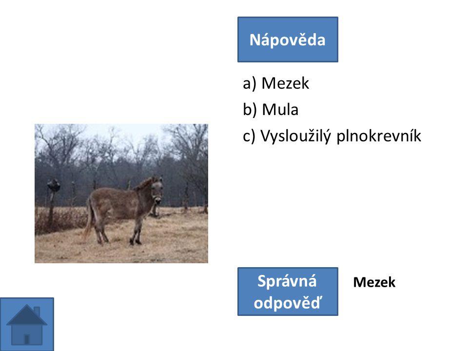a) Mezek b) Mula c) Vysloužilý plnokrevník Nápověda Správná odpověď Mezek