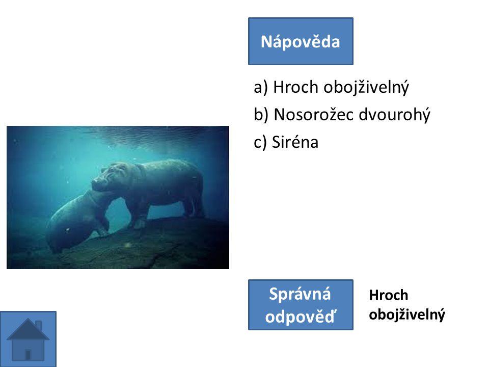 a) Hroch obojživelný b) Nosorožec dvourohý c) Siréna Nápověda Správná odpověď Hroch obojživelný