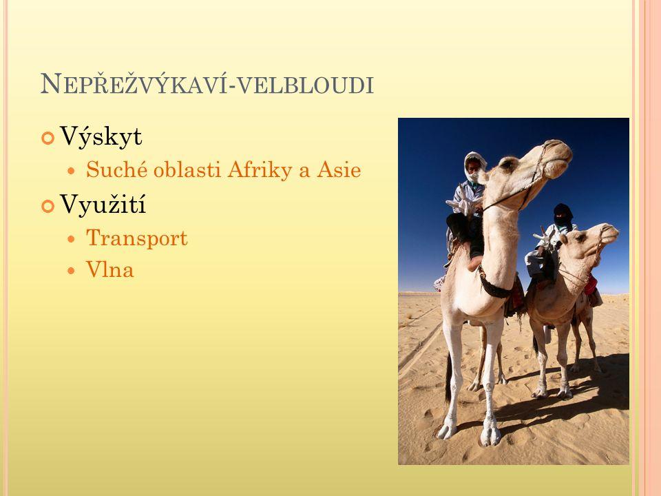 N EPŘEŽVÝKAVÍ - VELBLOUDI Výskyt Suché oblasti Afriky a Asie Využití Transport Vlna