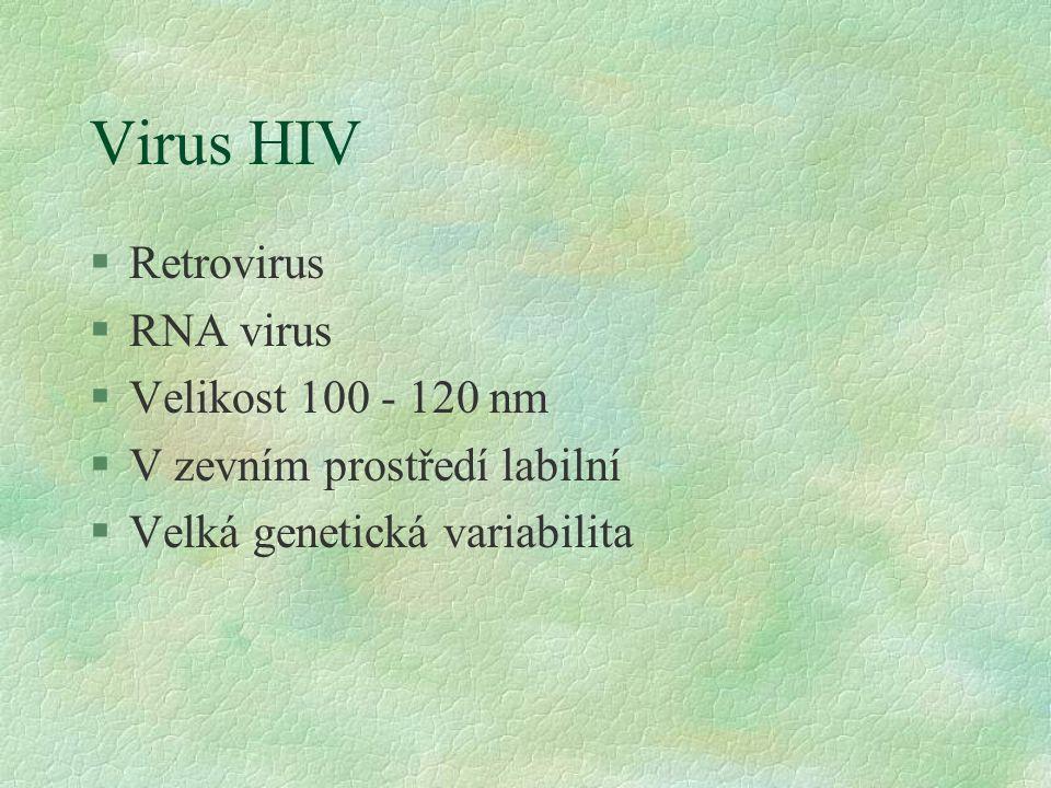 Virus HIV §Retrovirus §RNA virus §Velikost 100 - 120 nm §V zevním prostředí labilní §Velká genetická variabilita