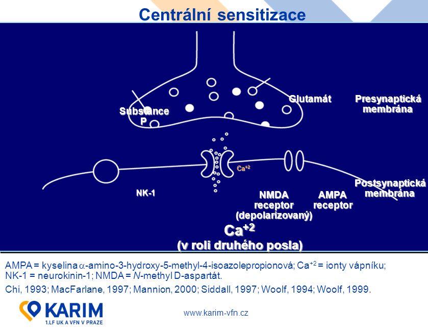 www.karim-vfn.cz Centrální sensitizace AMPA = kyselina  -amino-3-hydroxy-5-methyl-4-isoazolepropionová; Ca +2 = ionty vápníku; NK-1 = neurokinin-1; N