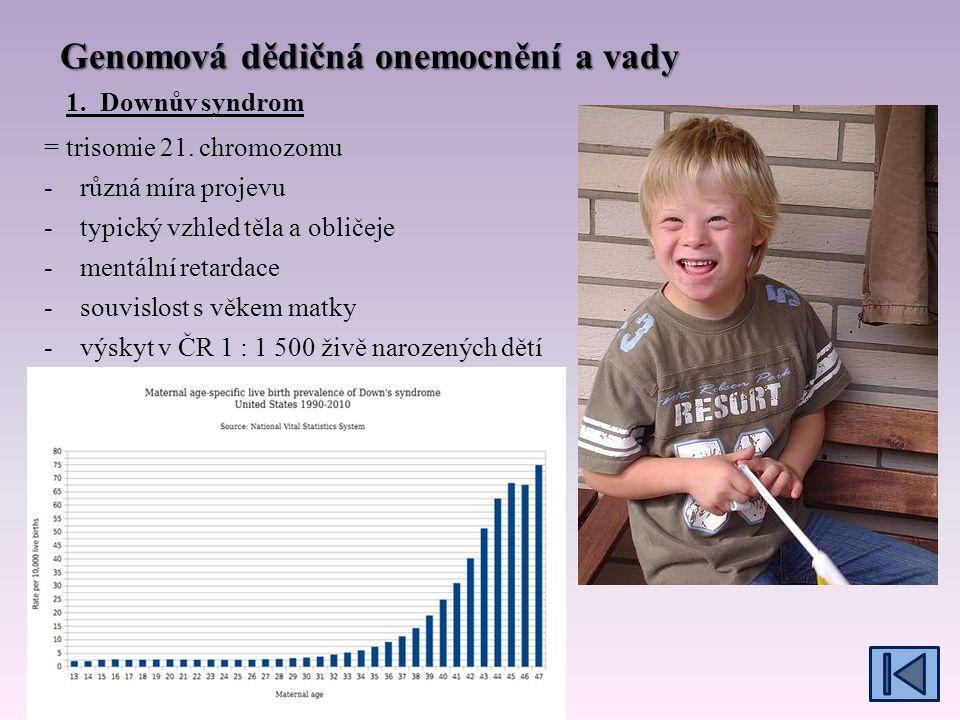 Genová dědičná onemocnění a vady – děděná gonozomálně, X-vázaná 4.