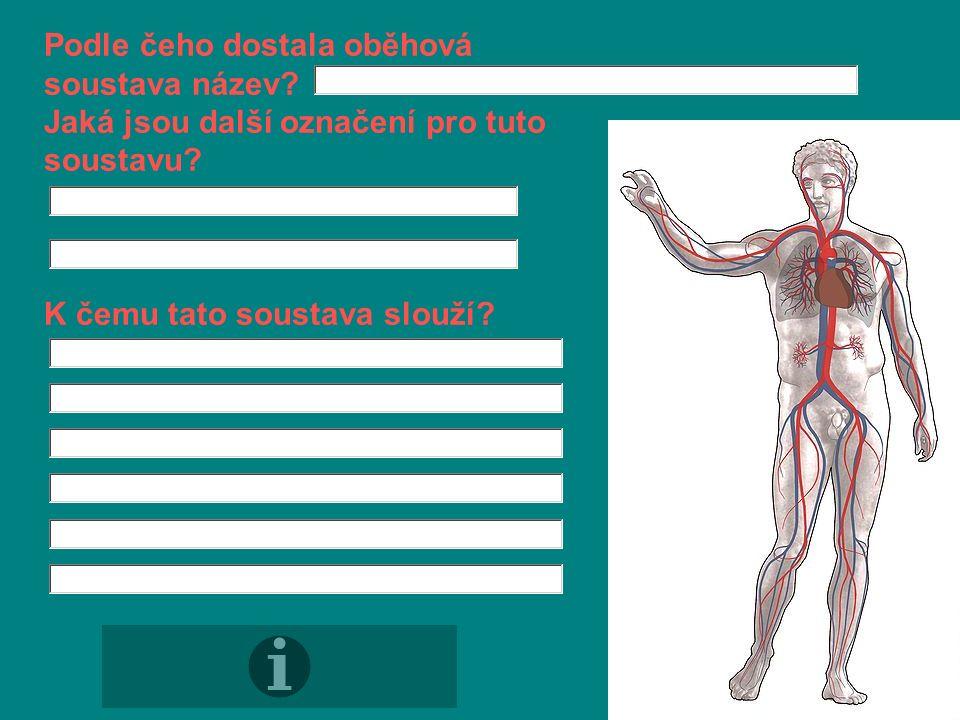 Doplň text: Oběhová soustava člověka je tvořena a, které se rozdělují na tři typy: 1) 2) 3)
