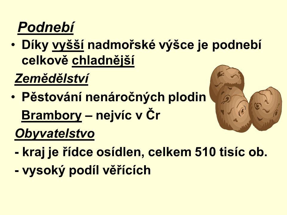 Vysočina je v ČR jednoznačně regionem výrobním: podíl primárního sektoru (zemědělství, lesnictví, rybářství) je největší Kraj Vysočina se na tvorbě hrubého domácího produktu ČR podílí jen 3,93% Velká nezaměstnanost, nízké mzdy Jaderná elektrárna Dukovany, vodní elektrárna Dalešice Průmysl