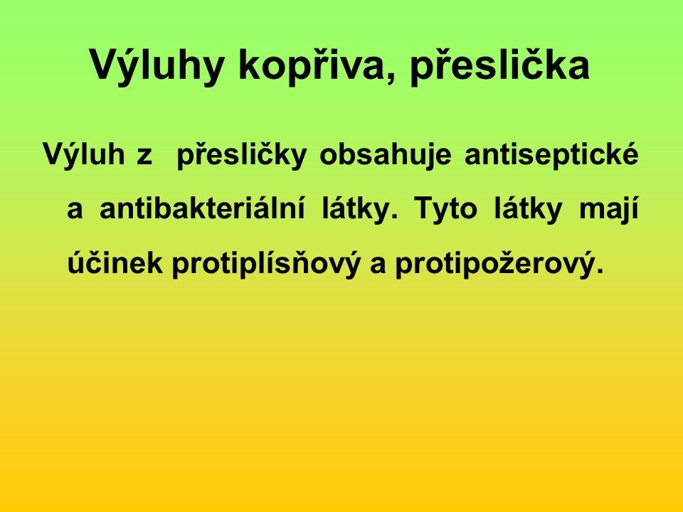 Výluhy kopřiva, přeslička Výluh z přesličky obsahuje antiseptické a antibakteriální látky.