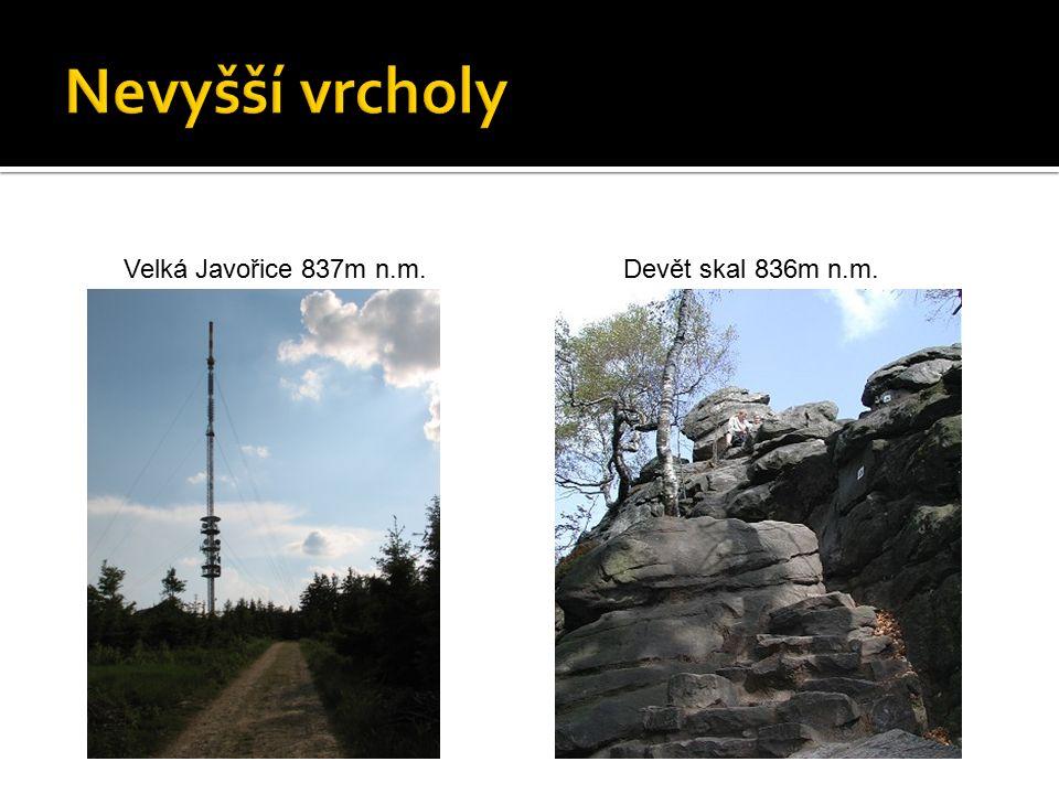 Velká Javořice 837m n.m.Devět skal 836m n.m.