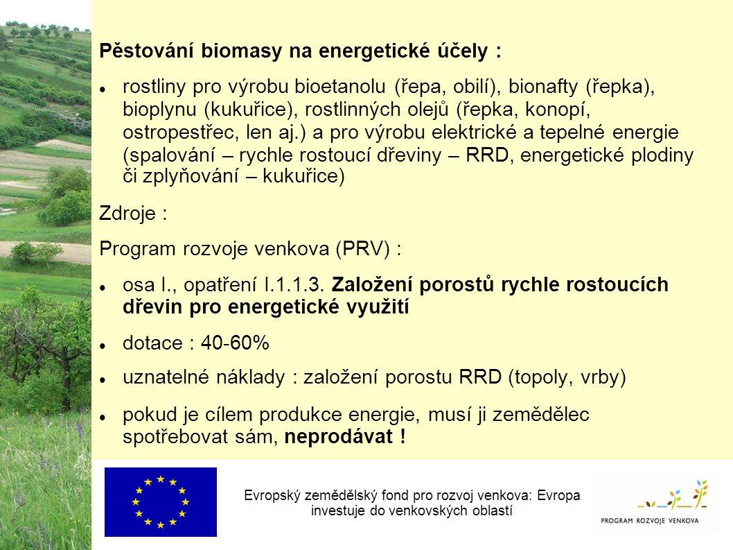 Pěstování biomasy na energetické účely : rostliny pro výrobu bioetanolu (řepa, obilí), bionafty (řepka), bioplynu (kukuřice), rostlinných olejů (řepka, konopí, ostropestřec, len aj.) a pro výrobu elektrické a tepelné energie (spalování – rychle rostoucí dřeviny – RRD, energetické plodiny či zplyňování – kukuřice) Zdroje : Program rozvoje venkova (PRV) : osa I., opatření I.1.1.3.