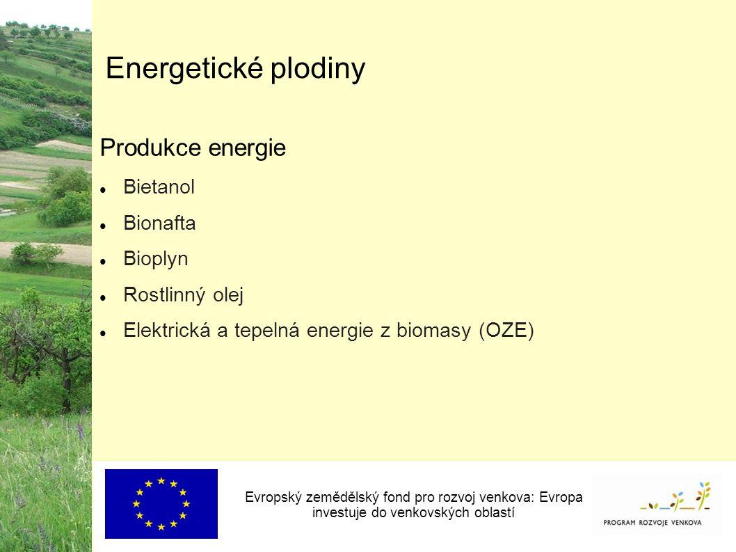 Energetické plodiny Produkce energie Bietanol Bionafta Bioplyn Rostlinný olej Elektrická a tepelná energie z biomasy (OZE) Evropský zemědělský fond pro rozvoj venkova: Evropa investuje do venkovských oblastí