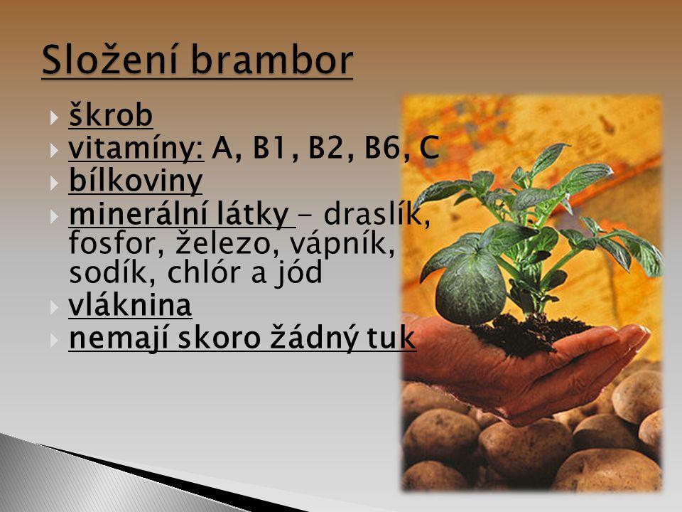  škrob  vitamíny: A, B1, B2, B6, C  bílkoviny  minerální látky - draslík, fosfor, železo, vápník, sodík, chlór a jód  vláknina  nemají skoro žád