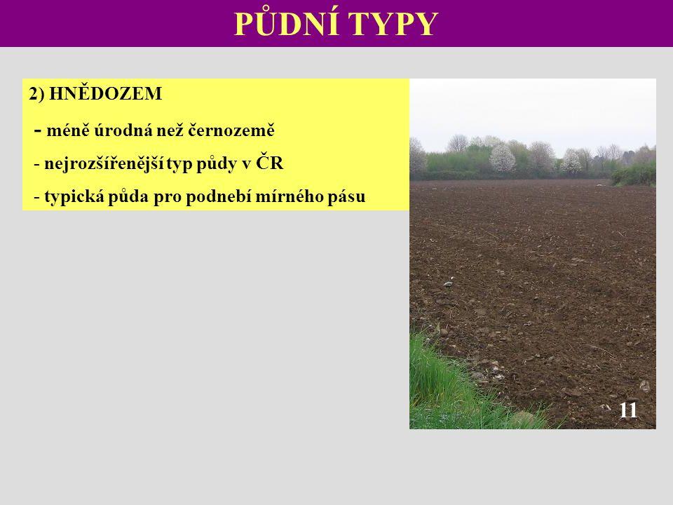 PŮDNÍ TYPY 2) HNĚDOZEM - méně úrodná než černozemě - nejrozšířenější typ půdy v ČR - typická půda pro podnebí mírného pásu 11