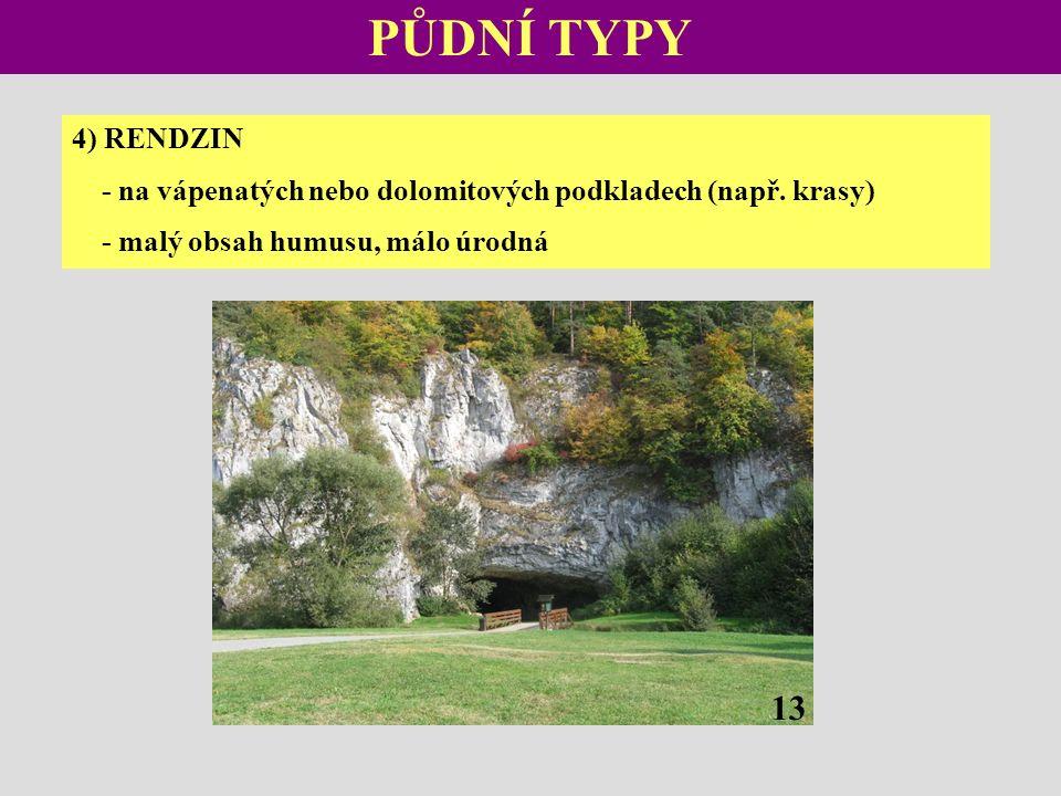 PŮDNÍ TYPY 4) RENDZIN - na vápenatých nebo dolomitových podkladech (např.