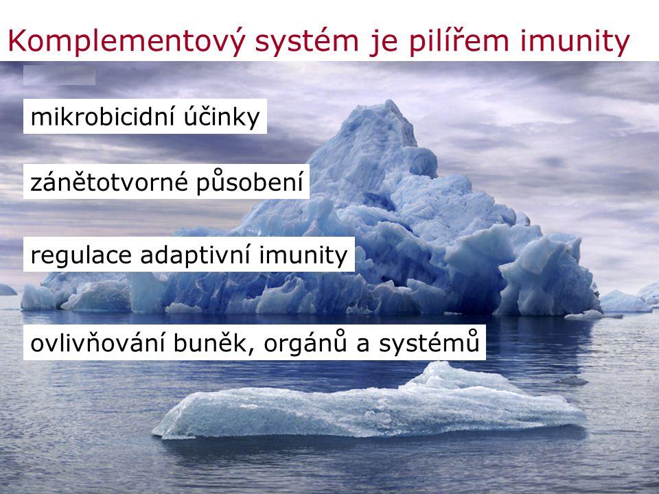 Komplementový systém je pilířem imunity mikrobicidní účinky zánětotvorné působení regulace adaptivní imunity ovlivňování buněk, orgánů a systémů
