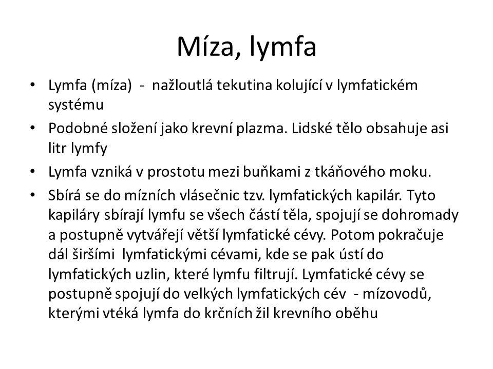 Míza, lymfa Lymfa (míza) - nažloutlá tekutina kolující v lymfatickém systému Podobné složení jako krevní plazma.