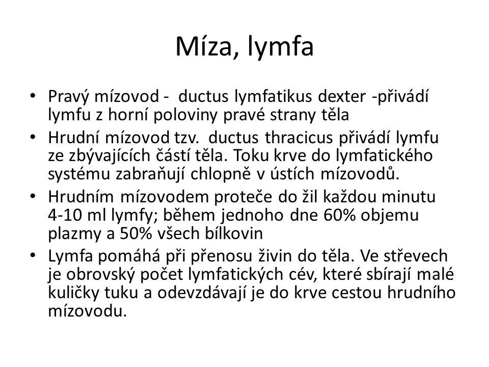 Míza, lymfa Pravý mízovod - ductus lymfatikus dexter -přivádí lymfu z horní poloviny pravé strany těla Hrudní mízovod tzv.