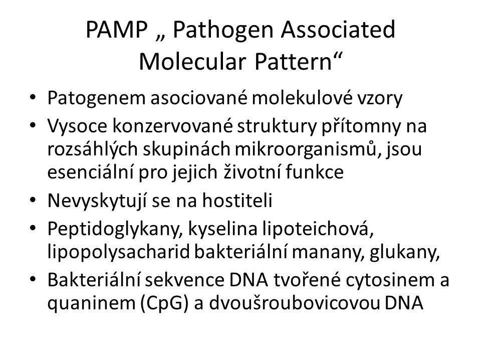 """PAMP """" Pathogen Associated Molecular Pattern Patogenem asociované molekulové vzory Vysoce konzervované struktury přítomny na rozsáhlých skupinách mikroorganismů, jsou esenciální pro jejich životní funkce Nevyskytují se na hostiteli Peptidoglykany, kyselina lipoteichová, lipopolysacharid bakteriální manany, glukany, Bakteriální sekvence DNA tvořené cytosinem a quaninem (CpG) a dvoušroubovicovou DNA"""