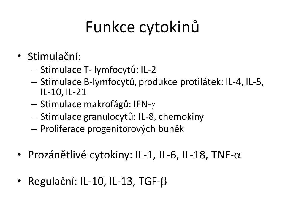 Funkce cytokinů Stimulační: – Stimulace T- lymfocytů: IL-2 – Stimulace B-lymfocytů, produkce protilátek: IL-4, IL-5, IL-10, IL-21 – Stimulace makrofágů: IFN-  – Stimulace granulocytů: IL-8, chemokiny – Proliferace progenitorových buněk Prozánětlivé cytokiny: IL-1, IL-6, IL-18, TNF-  Regulační: IL-10, IL-13, TGF- 